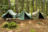 Tenten op boy scout camp — Stockfoto