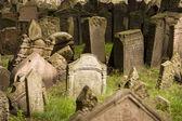 Old Prague Jewish Cemetery — Stock Photo