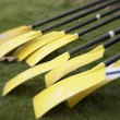 Stock Photo: Yellow Oars Before Race