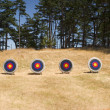Stock Photo: Four Archery Targets