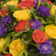 Flower Display — Stock Photo #7369168