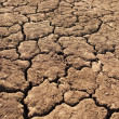 Dry, Parched Earth — Stock Photo