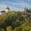 Prague Castle In Autumn — Stock Photo