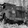 Old Truck In Infrared - Stock fotografie