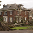 House With Tree Damage - Stock Photo