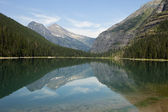 Avalanche Lake Landscape — Stock Photo