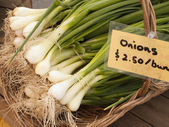 Green Onions At Market — Stockfoto
