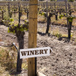 Stock Photo: Winery Sign In Vineyard