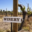 Winery Sign With Old Vines — Stock Photo