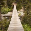 Stock Photo: Wood Bridge in Glacier National Park