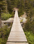 Wood Bridge in Glacier National Park — Stock Photo