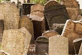 Nagrobków cmentarza żydowskiego — Zdjęcie stockowe