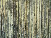 地衣の木製の柵 — ストック写真