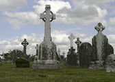 Historic Ireland Cemetery — Stock Photo