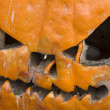 Rotten Halloween Pumpkin — Stock Photo