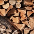 Stack Of Firewood Logs — Stock Photo