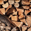 Stack Of Firewood Logs — Stock Photo #7570820