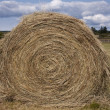Royalty-Free Stock Photo: Hay Roll On A Farm