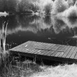 Swimming Hole, in Infrared — Stock Photo