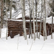 Ghost Cabin In Snow — Stock Photo #7572235
