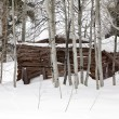 Ghost Cabin In Snow — Stock Photo