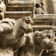 Dragon Gargoyle On Cathedral — Stock Photo