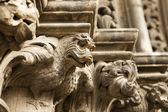 Dragon Gargoyle On Cathedral — Stock Photo