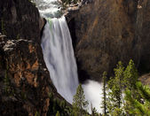 Lower Yellowstone Waterfall — Stock Photo
