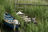 Two Boats In Reeds — Stock Photo