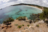 Ibiza's beach — Stock Photo