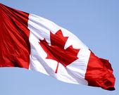 カナダの国旗 — ストック写真