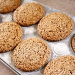Fresh Baked Bran Muffins - Stock Photo