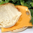 English Muffin With Cheese — Stock Photo