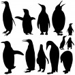 Vector Penguin Silhouettes collection — Stock Vector