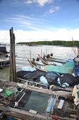 Kukup 漁村のボート — ストック写真