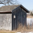 Stock Photo: Old Weathered Board and Batten Shed with Birdhouse