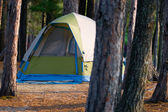 Tent Camping in the Woods — Stock Photo