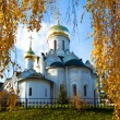 Church in the autumn weather — Stock Photo