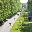 Central park in Olomouc city - Czech republic - Stock Photo