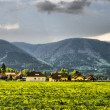 Beautiful panoramfrom Beskydy, Czech republic - HDR — Stock Photo #7367477