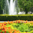"Central park ""Flora"" in Olomouc city - Czech republic — Stock Photo"