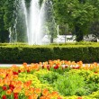 "Central park ""Flora"" in Olomouc city - Czech republic — Foto Stock"