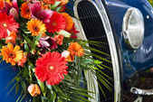 Flowers on the car radiator — Stock Photo