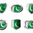 Pakistan set shiny buttons and shields of flag with metal frame  — Stock Vector