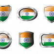 India set shiny buttons and shields of flag with metal frame - v — Stock Vector