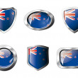 New zealand set shiny buttons and shields of flag with metal fra — Stock Vector #7366454