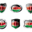 Kenya set shiny buttons and shields of flag with metal frame - v — Stock Vector