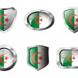 Algeria set shiny buttons and shields of flag with metal frame - - Stock Vector