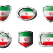 Iran set shiny buttons and shields of flag with metal frame - ve — Stock Vector