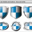 Vector illustration set. Shiny and glossy shield and button with — Stock vektor